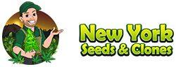 New York Seeds & Clones
